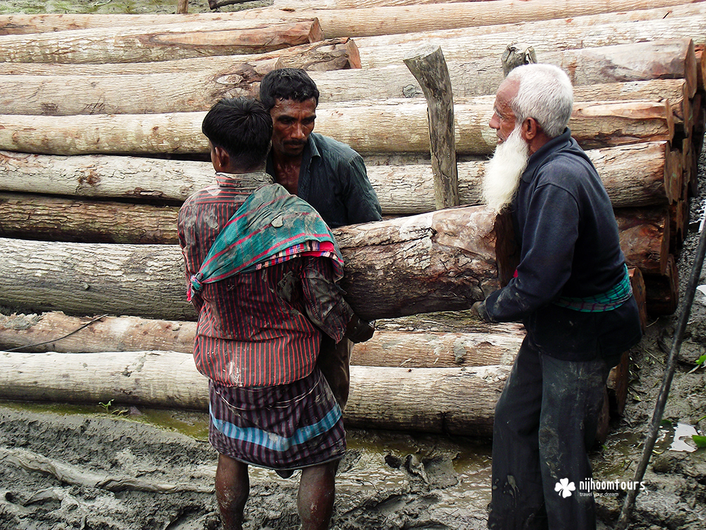Lifting logs manually on the floating timber market of Barisal in Bangladesh.